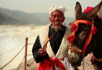 الحمار المصري والتنين الصيني