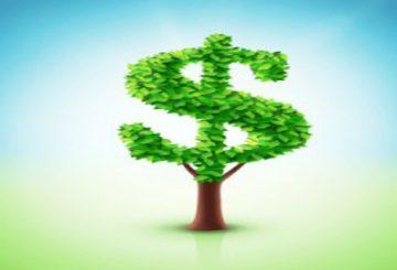 الرأسمالية البيئية إزاء الدولانية البيئية