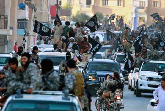 تنظيم داعش مشروع شمولي جهادوي يهدف لبناء دولة هيمنوية توسعية